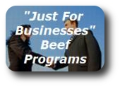 our business programs